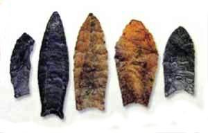 Examples of Clovis points