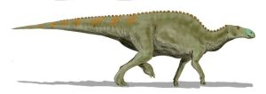 Artist's rendering of Edmontosaurus sp. Image credit: ArthurWeasley/Wikipedia