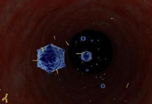 virus and antibody